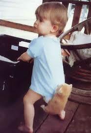 Воспитание котят и детей
